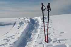 stock-photo-11629290-touren-ski-poles-sticks